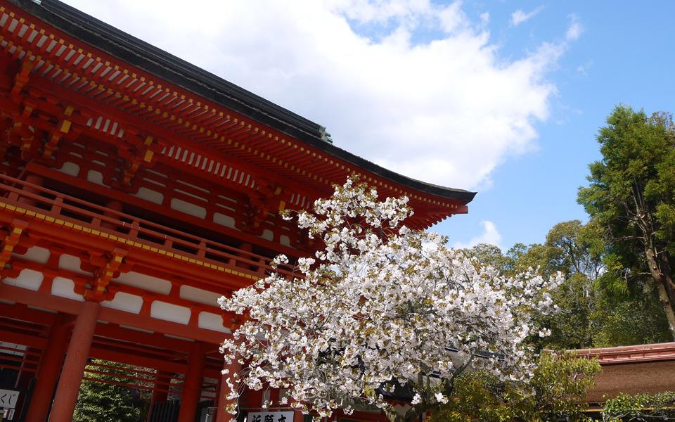 Kamigamo Temple