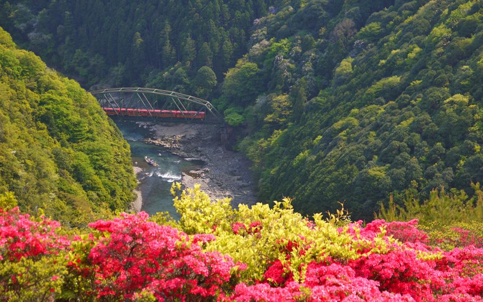 Mt.Arashiyama