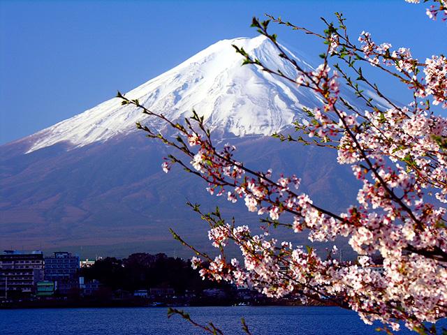 Japan Alps & Mt.Fuji Tour (Tokyo Start)