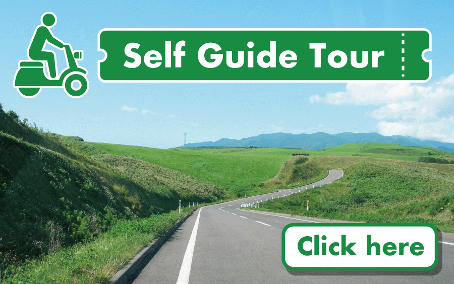Self - Guide Tour Package