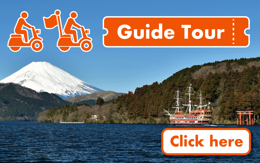 Guide Tour Package