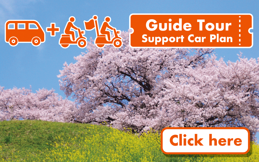 Guide Tour + Car Support Package